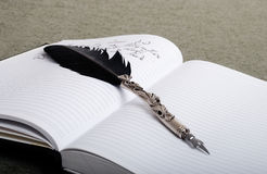 A feather on notebook. A black feather on white notebook Stock Photos