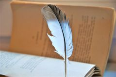 Feather and old book Stock Photography