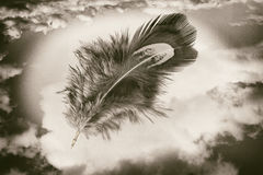 Feather over sky Royalty Free Stock Photos