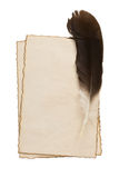 Feather on parchment at white Royalty Free Stock Photos