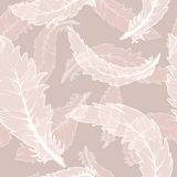 Feather pattern Stock Photography