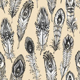 Feather Pattern Stock Image