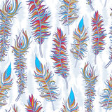 Feather pattern Royalty Free Stock Photography