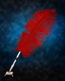 Feather pen Stock Photography