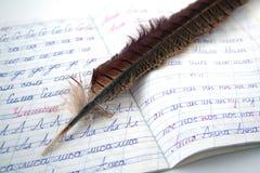 Feather pen. Royalty Free Stock Photo