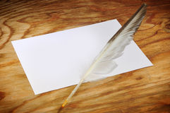 Feather on a piece of paper Royalty Free Stock Images