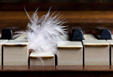 Feather pushing piano key Royalty Free Stock Image