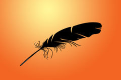 Feather on a red Royalty Free Stock Image