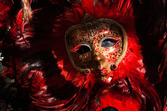 Feather red & black mask 2 Stock Image