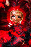 Feather red & black mask portrait Royalty Free Stock Photography