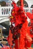 Feather red mask, Venice, Italy, Europe Stock Photos