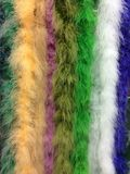 Vertical feather ribbon background. Vertical feather ribbon colorful background Stock Images