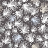 Feather seamless ornamental wallpaper Stock Images