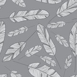 Feather seamless pattern Royalty Free Stock Photos