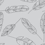 Feather seamless pattern Stock Photos