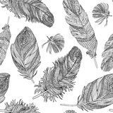 Feather seamless pattern. Vector feathers on a white background. Royalty Free Stock Photos