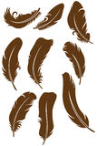 Feather Set. Doodle style. Vector Royalty Free Stock Photos