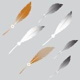 Feather Set Stock Photos