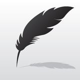 Feather with shadow Royalty Free Stock Photos