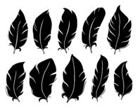Feather silhouette. Bird wing feathers, lung quill and vintage pen isolated vector illustration set. Feather silhouette. Bird wing feathers, lung quill and vector illustration