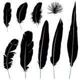Feather silhouette set. Retro Pen icon collection. Vector illustrarion. Feather set. Vector illustration isolated over white background Stock Images