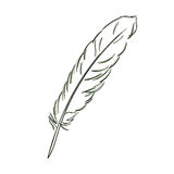 Feather sketch illustration. Stock Images