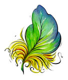 Feather. Watercolor illustration Stock Photography