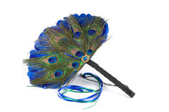 Feathered fan alpha. Peacock and blue feathered fan royalty free stock photos