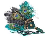 Feathered fan beta. Peacock and green feathered fan royalty free stock photos