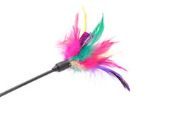 Feathered Pole Cat Toy. A feathered pole cat toy on a white background Royalty Free Stock Images