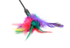 Feathered Pole Cat Toy Royalty Free Stock Photos