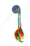 Feathered pole cat toy Royalty Free Stock Photo