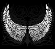 Feathered wings Stock Image
