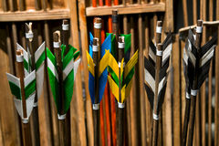 Feathering arrows for archery. Which are in the quiver Royalty Free Stock Photos