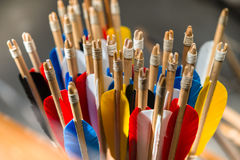 Feathering arrows for archery. Which are in the quiver Royalty Free Stock Photo