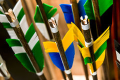 Feathering arrows for archery. Which are in the quiver Royalty Free Stock Images