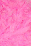 Feathers. Detailed texture of soft gentle pink feathers Stock Photo