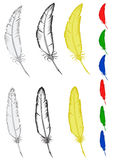 Feathers. Vector images of ancient feathers for letter, set of different colors Royalty Free Stock Photos
