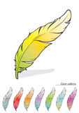 Feathers. With a set of different colors Stock Photography