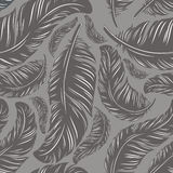 Feathers. Seamless background with a set of feathers Stock Photography