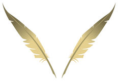 Feathers. Two feathers place in a V shape on white background. Vector illustration royalty free illustration