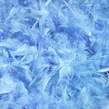 Feathers abstract. Fluffy background. Soft blue feathers Stock Images