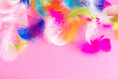 Feathers abstract background. Background for design with soft colorfull feathers pattern. Soft fluffy feathers on Royalty Free Stock Photo