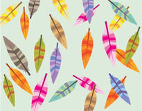 Feathers background Stock Images