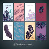 Feathers background set. Collection of backgrounds with feathers for banners, visiting cards and price tag. Easy to edit. No auto trace stock illustration