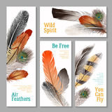 Feathers Banners Set Stock Images