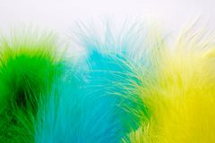 The feathers of birds are green, yellow and blue. White backgrou. Poster for the carnival. Bright festive feathers in the color of the flag of Brazil Royalty Free Stock Photos