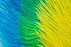 The feathers of birds are green, yellow and blue. White backgrou. Poster for the carnival. Bright festive feathers in the color of the flag of Brazil Royalty Free Stock Image
