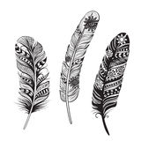Feathers of birds. Vector illustration Stock Images