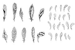 Feathers. Black and white. Black and white feathers.   For your design Stock Photography